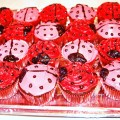 Lady Bug Theme Birthday Party