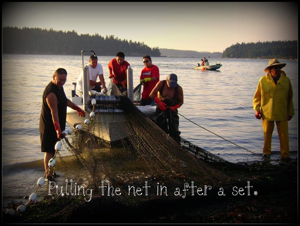 Fishermen Pulling Net