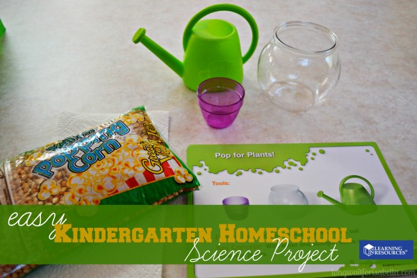 kindergarten homeschool science