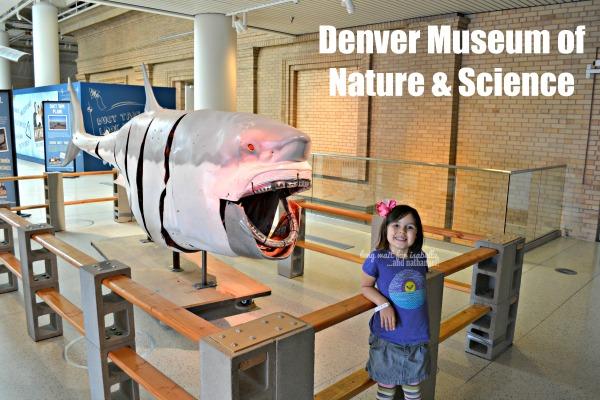 denver museum 3