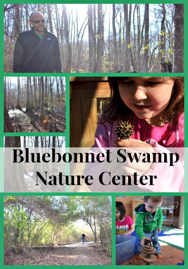 bluebonnet swamp 2