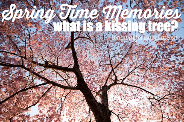 The Kissing Tree: Spring Time Memories