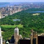 New York City Neighborhood Food Lovers Guide