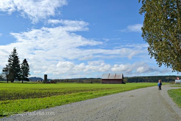 swansons farm
