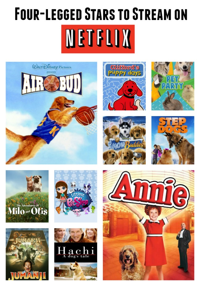 animals on netflix