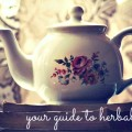 Your Guide to Herbal Teas