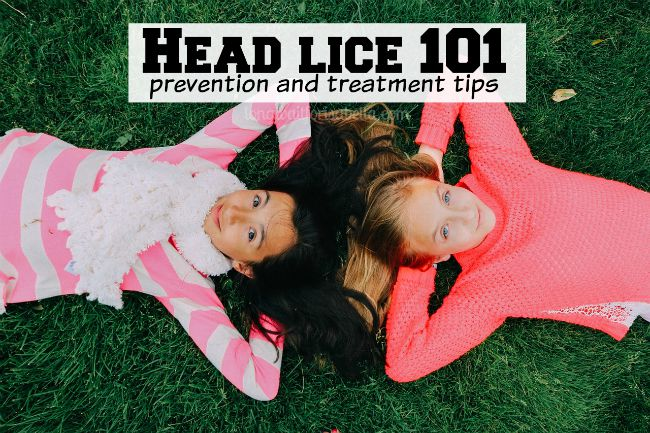 "The ""Nitty"" Truth about Head Lice"