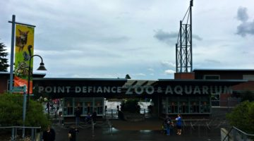 The Kids' Zone at Point Defiance Zoo & Aquarium is Awesome!