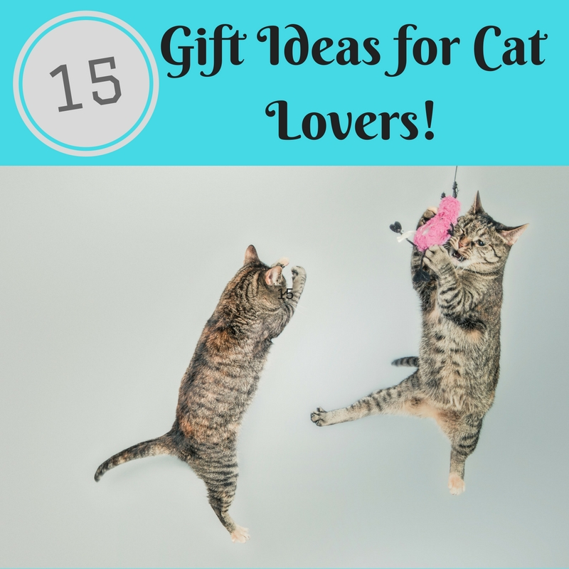Gift Guide: Cat Lovers Gifts