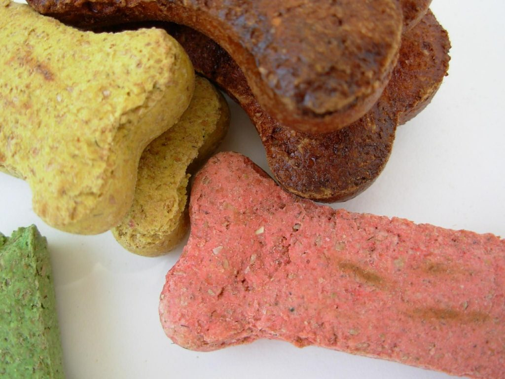 Healthy DIY Dog Treats (With Pumpkin!)