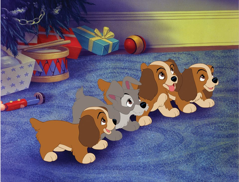 Lady And The Tramp Puppies Long Wait For Isabella