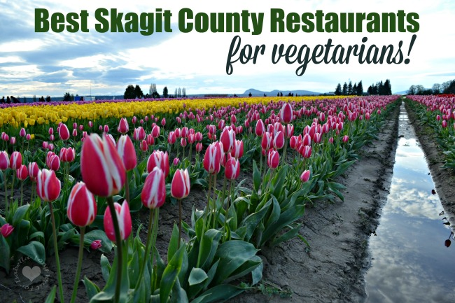 The Local Dish: Best Skagit County Restaurants for Vegetarians
