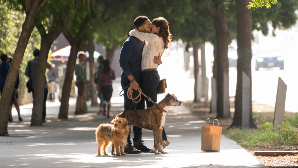 Dog Lovers, You Must See the Dog Days Movie!