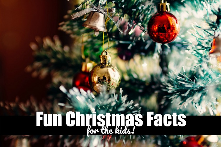 Christmas Fun Facts for the Kids to Learn